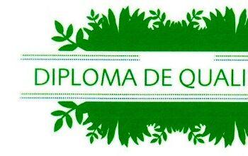 Eco-escolas DIPLOMA 3